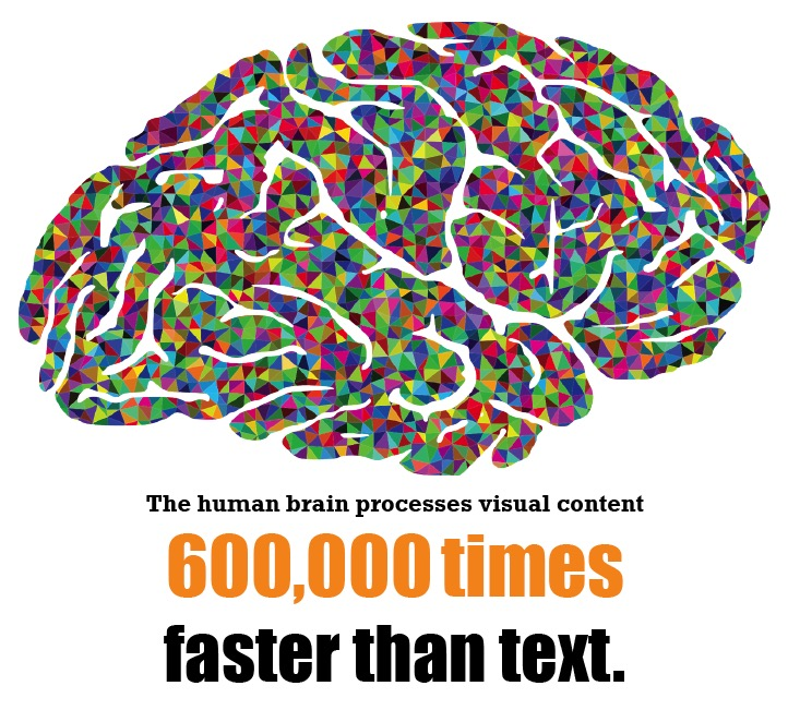 The brain processes visual content